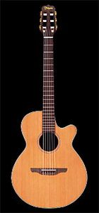 Takamine EAN60C Acoustic Electric Guitar Review