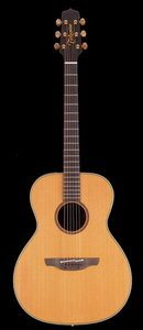 Takamine EAN70  Acoustic Electric Guitar Review