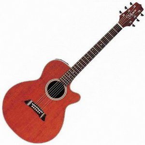 Takamine EF261SAN Acoustic Electric Guitar Review