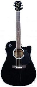 Takamine EG531SSC Acoustic Electric Guitar Review
