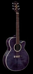 Takamine EG540C-STCY Acoustic Electric Guitar Review