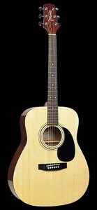 Takamine G330S Acoustic Guitar Review