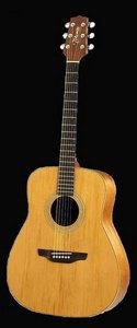 Takamine GS330S Acoustic Guitar Review