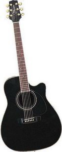 Takamine EG334SC Cutaway Acoustic Electric Guitar Review