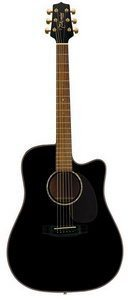 Takamine EG340SC Cutaway Acoustic Electric Guitar Review