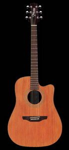 Takamine EGS330SC Cutaway Acoustic Electric Guitar Review