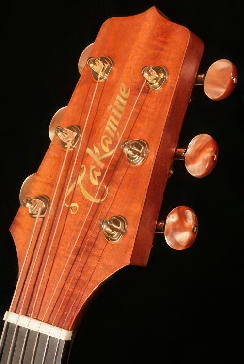 Takamine TAN16Koa Supernatural Series Acoustic Electric Guitar Review
