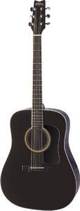 Washburn D10SB Acoustic Guitar