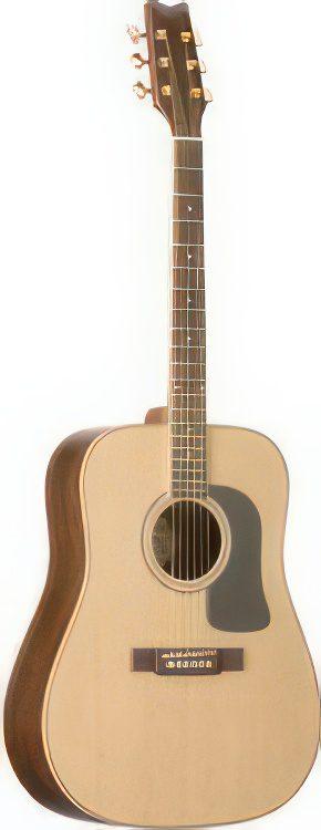 Washburn D10SDL Deluxe Acoustic Guitar