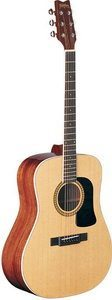 Washburn D10S Acoustic Guitar