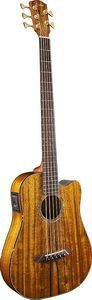 Fender Artist Signature Victor Bailey 5-String Acoustic Electric Bass